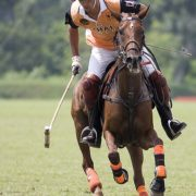polo instructor