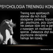 psychologia treningu koni2